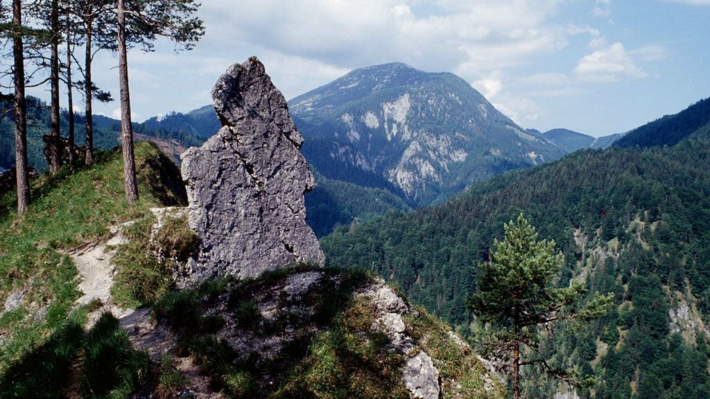 Kalkalpen Nemzeti Park