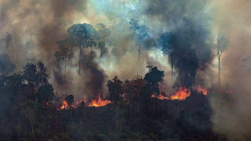 amazónia erdőtűz