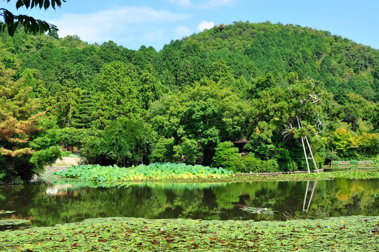 A tó mesebeli szépsége mindenkit elvarázsol. (Fotó: Profimedia)