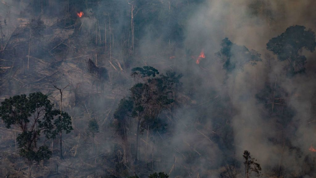 erdőtűz amazonas
