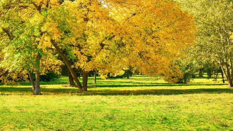 ősz időjárás