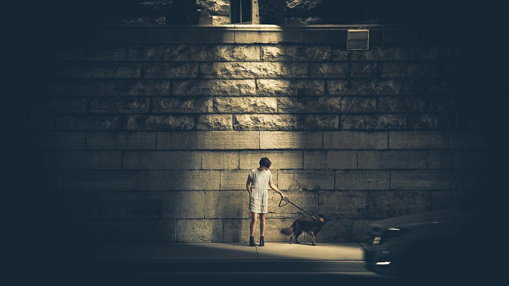 kutya, nyakörv, póráz, város