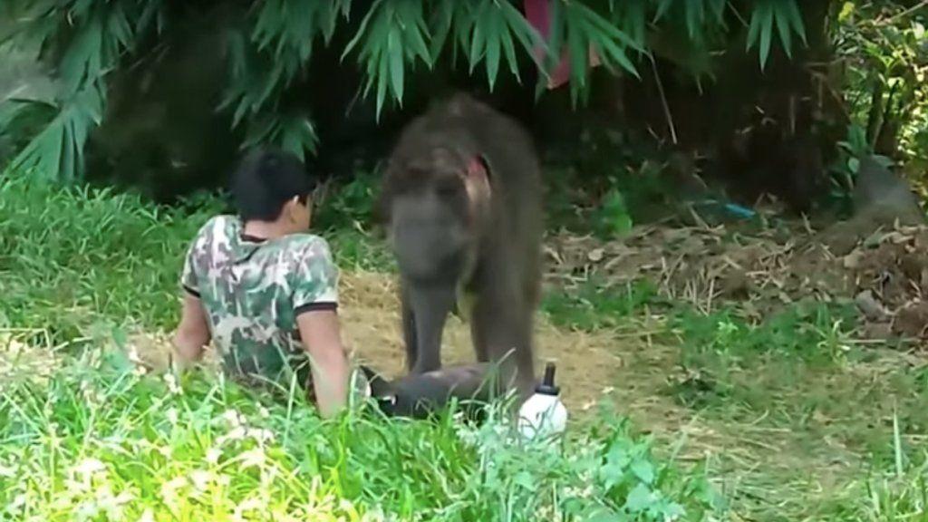 video szex thaiföld