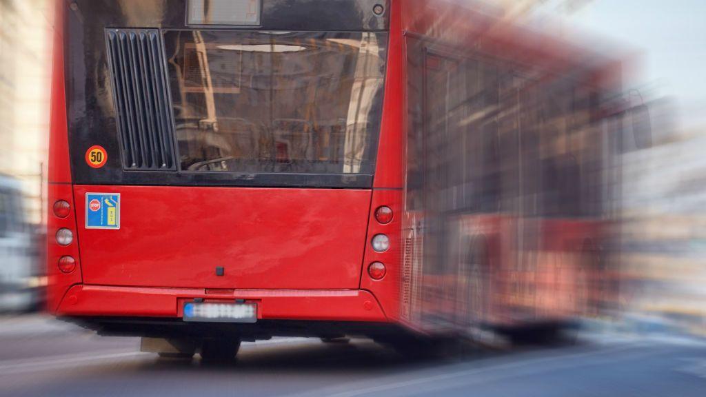 belgrád busz