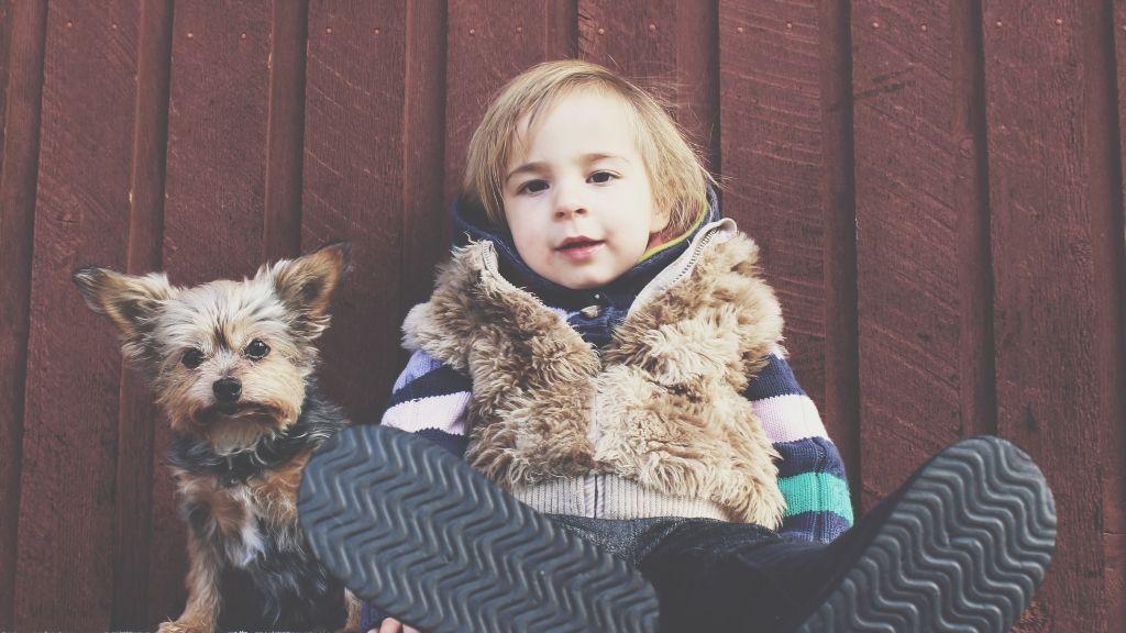 kutya kutyatartás gyerek