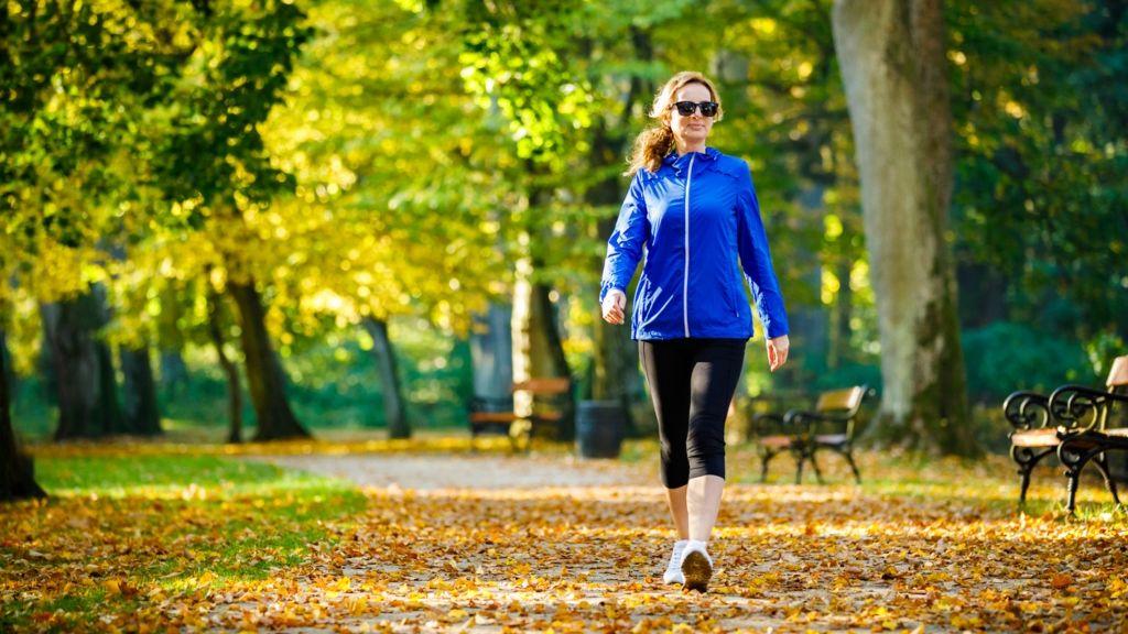 memória agy gyaloglás kutatás