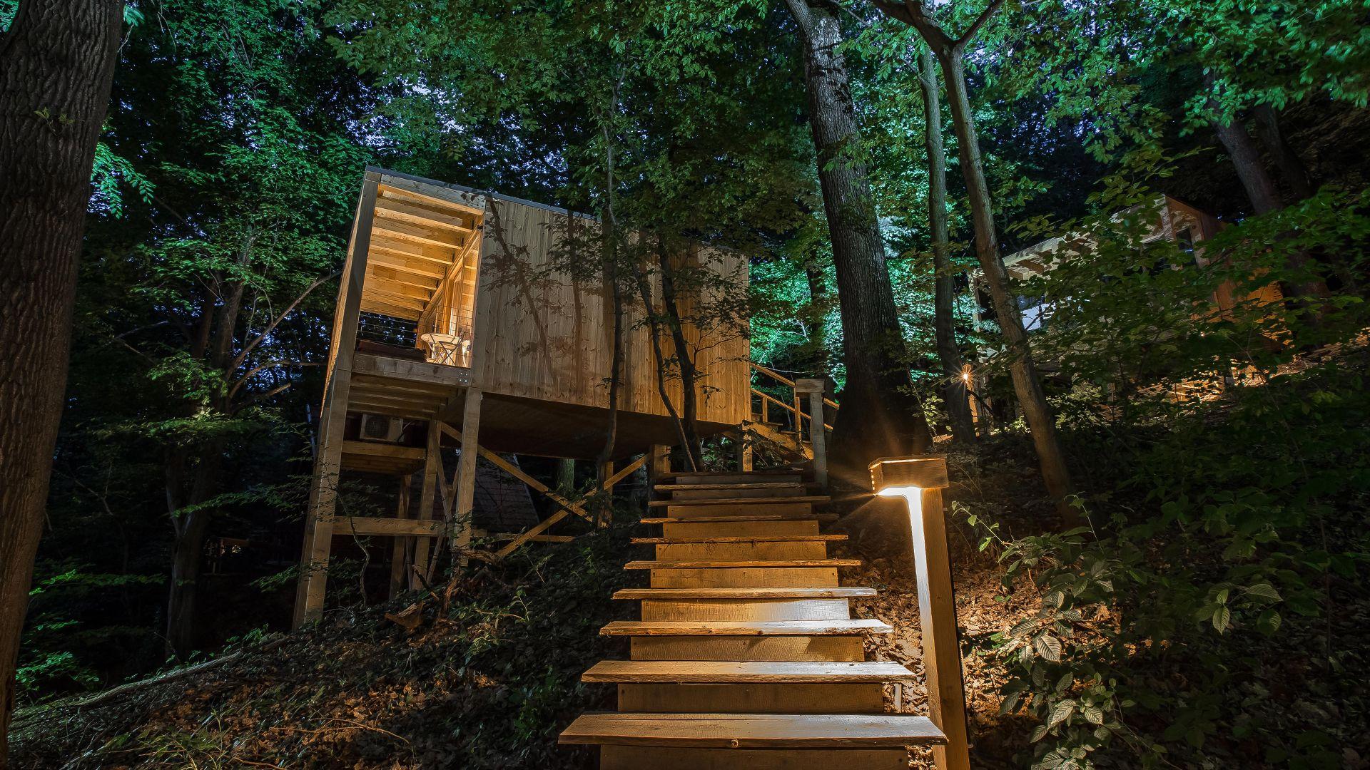 Noszvaj Treehouse