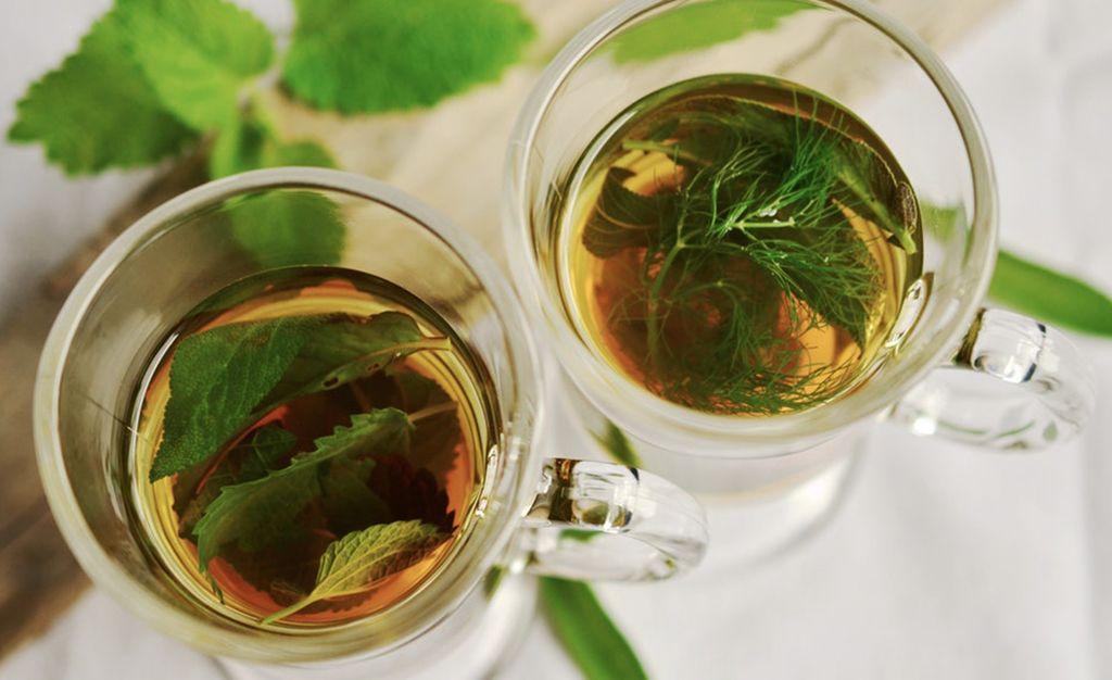 tea, gyógynövény, bögre