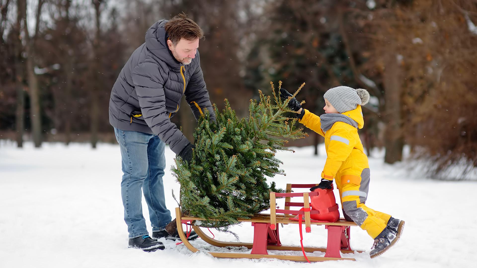 apa fia karácsony