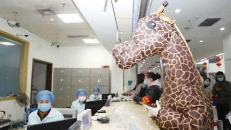 zsiráfjelmez koronavírus