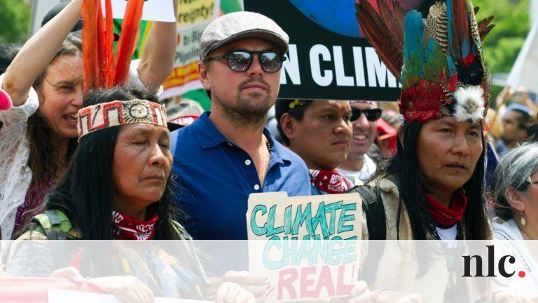 Az esőerdők megmentésétől a vegán étrendig – 6 sztár, akinek tényleg fontos a környezetvédelem