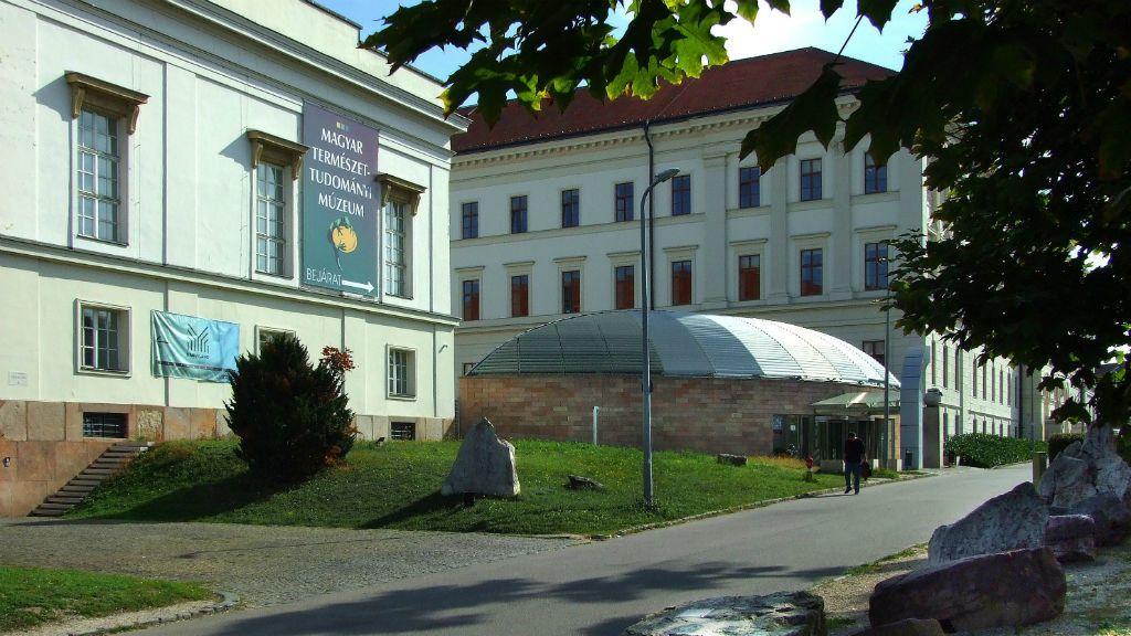 Magyar Természettudományi Múzeum