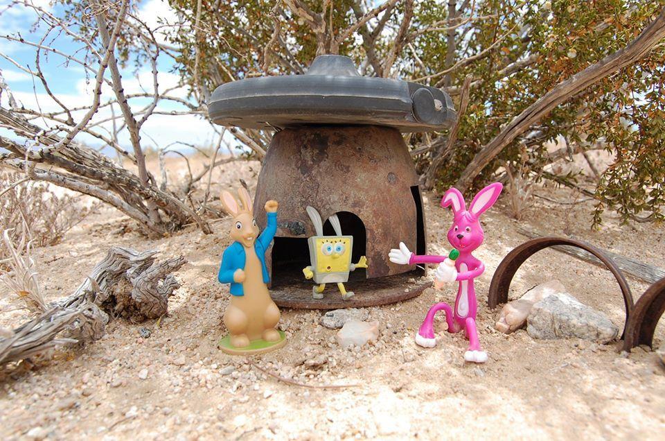 Bunner Bob (eredetileg Spongya Bob) végre otthonra lel Sunvale Village-ben