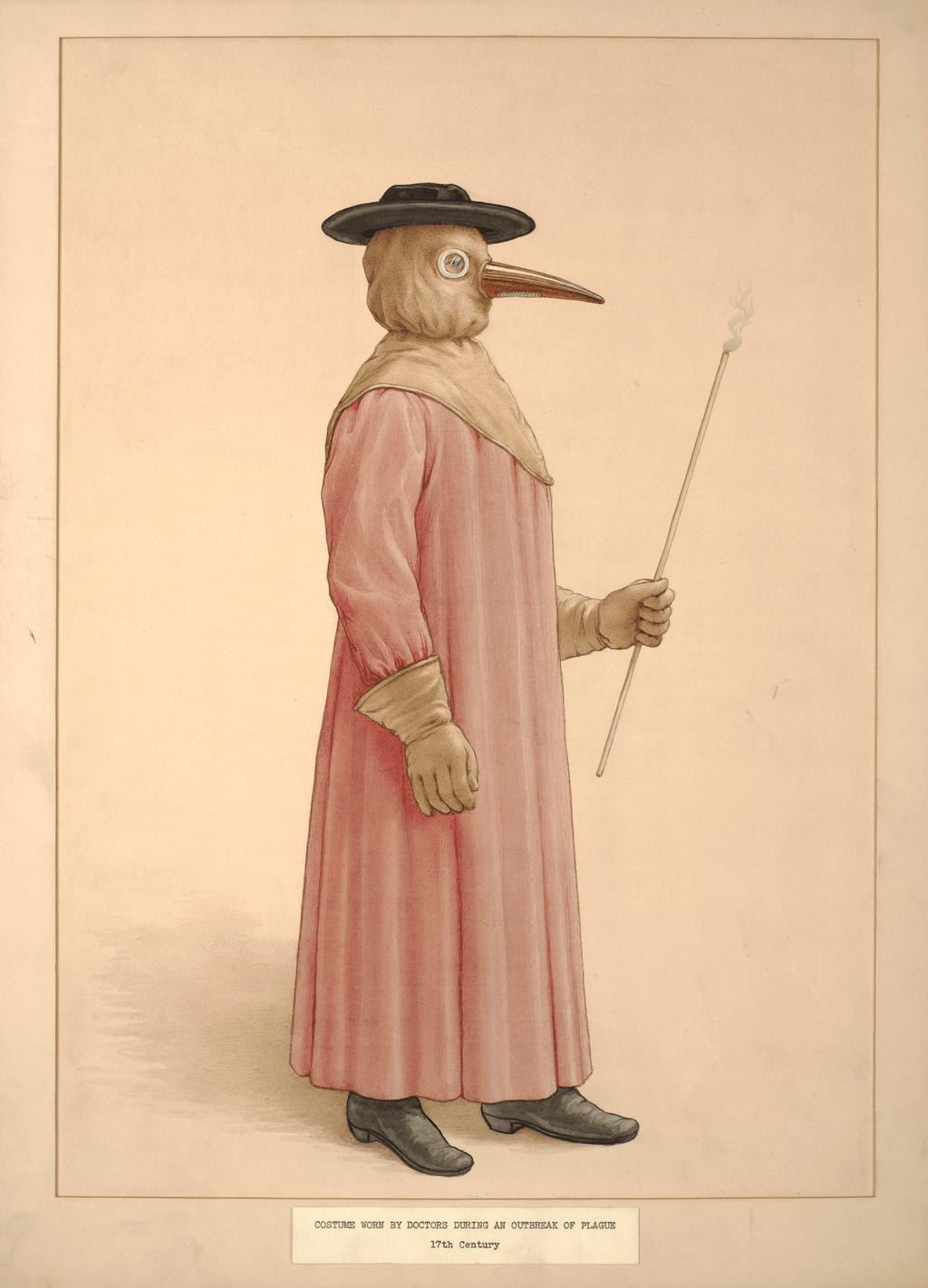 Rózsaszínben is mutatós (forrás: Wikipedia)