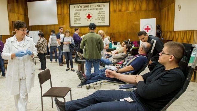 Rekord adomány a Magyar Vöröskeresztnek