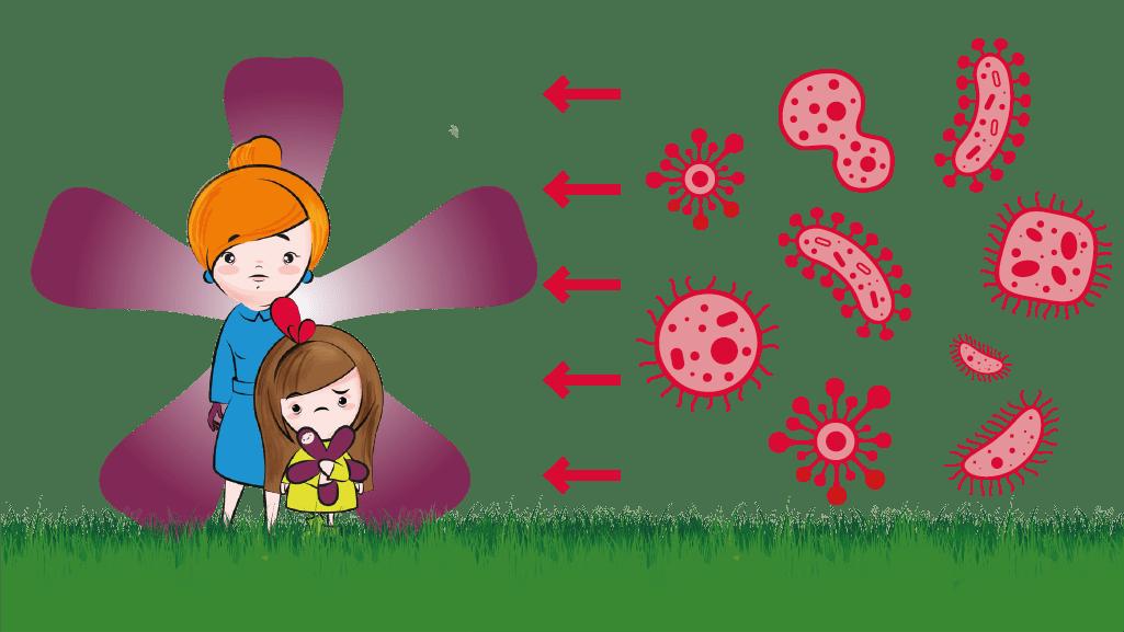 Vírusok ellen segítenek a gyógynövények (x)