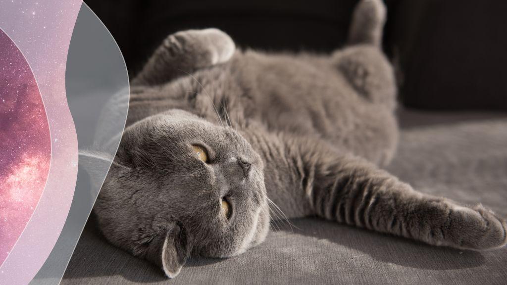 A nyugalom, a higgadtság most a legfontosabb (fotó: Getty)