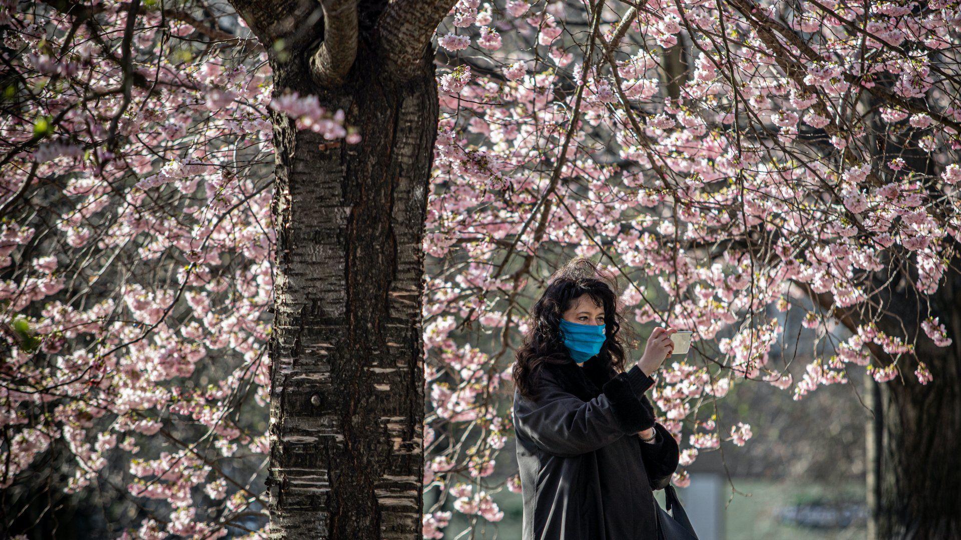 Védőmaszkot viselő nő sétál egy prágai parkban 2020. március 25-én, miután a cseh kormány kijárási korlátozásokat rendelt el a Covid-19 járvány megfékezése érdekében (Fotó: MTI/EPA/Martin Divisek)