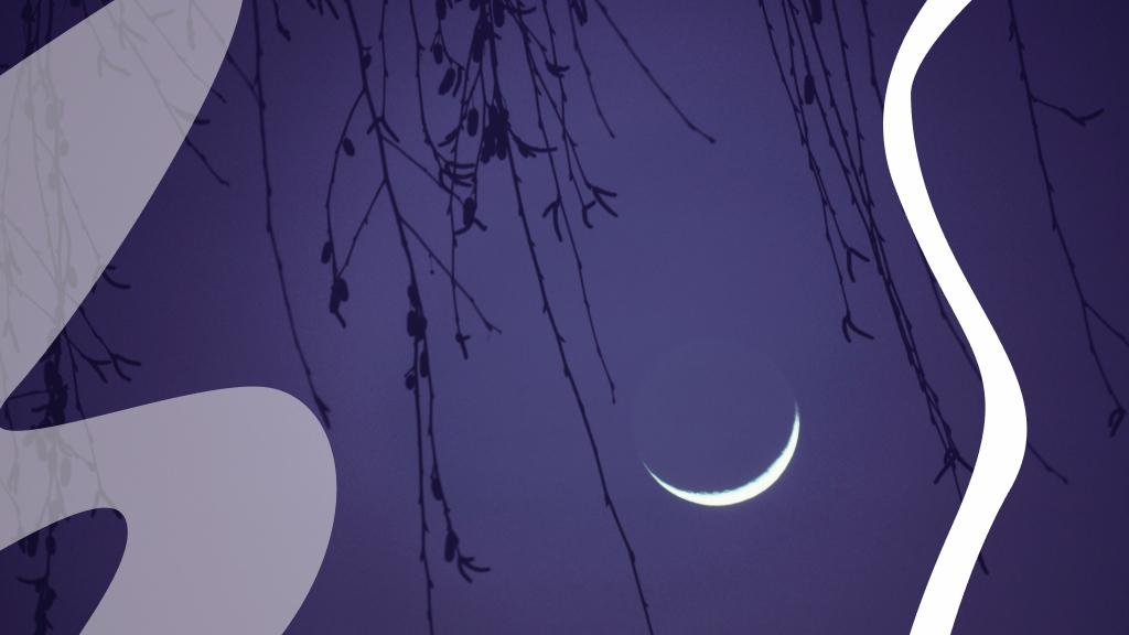 A Kos újhold az új kezdet lehetőségét hozza a csillagjegyeknek (fotó: Getty)