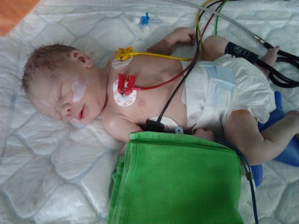 Súlyos szívbetegséggel született Nimród
