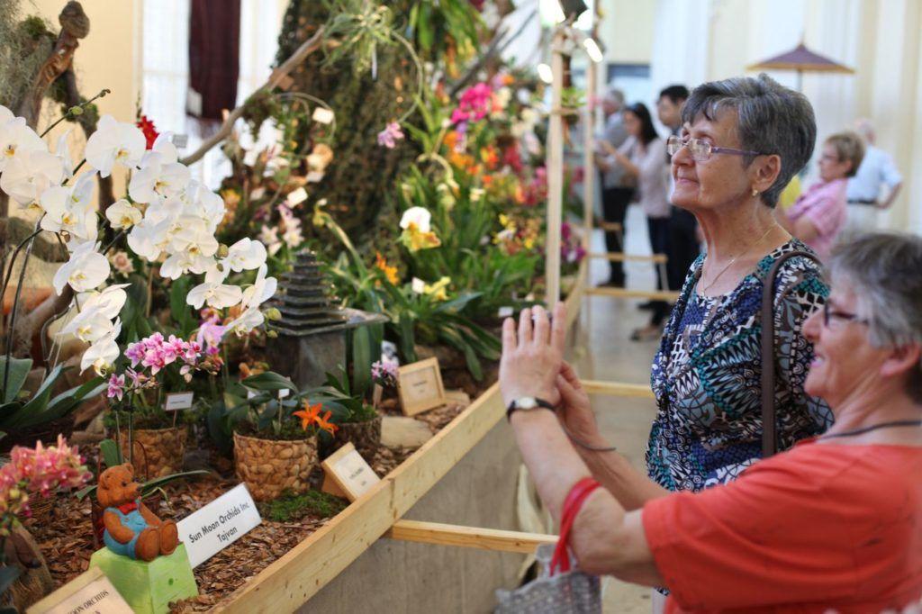 Orchidea kiállítás a Mezőgazdasági Múzeumban (Fotó: Leéb Ádám)