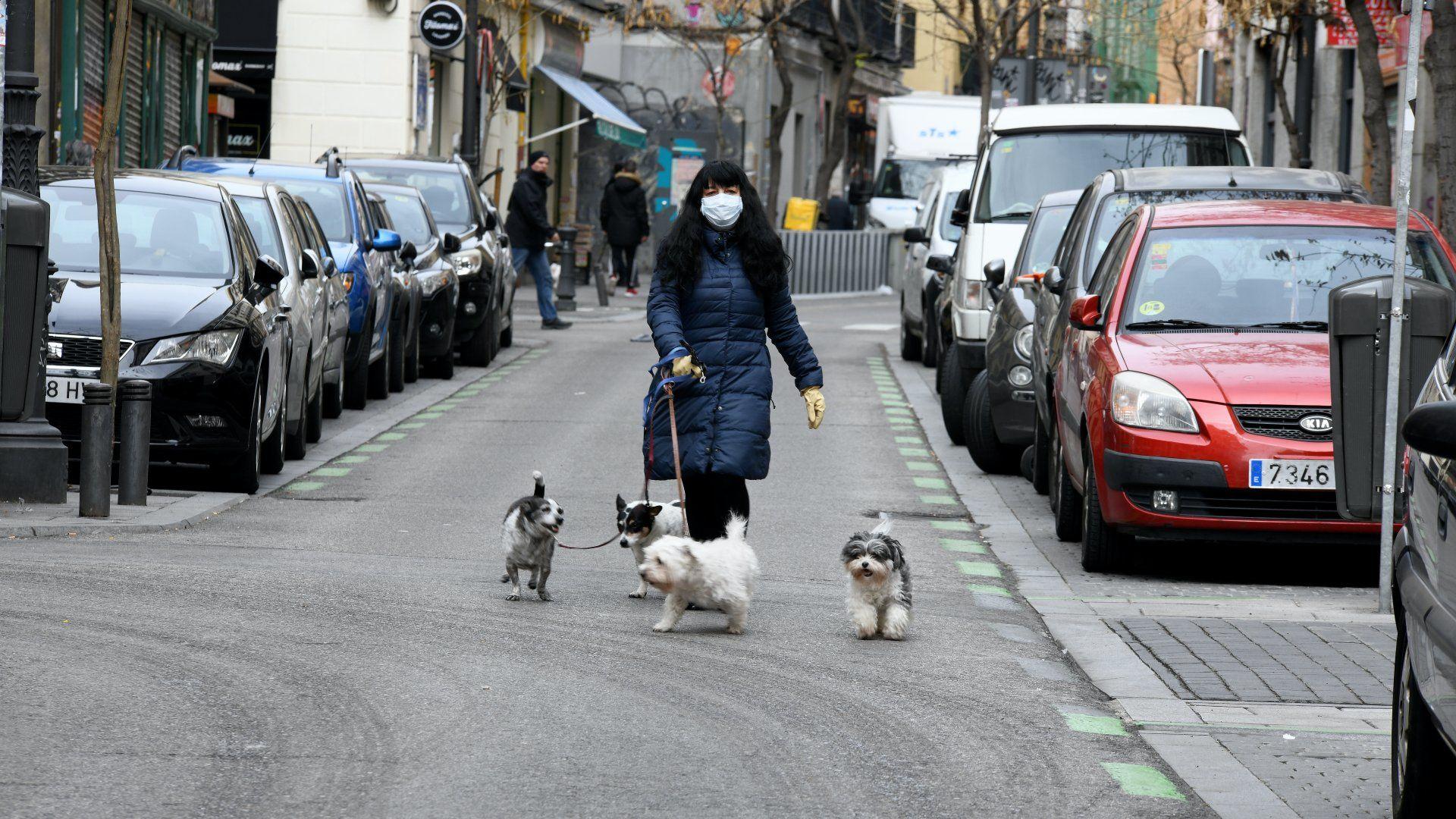 Egy nő védőmaszkban sétáltat kutyákat a spanyolországi Madridban 2020. március 18-án. (Fotó: Juan Carlos Lucas/NurPhoto)