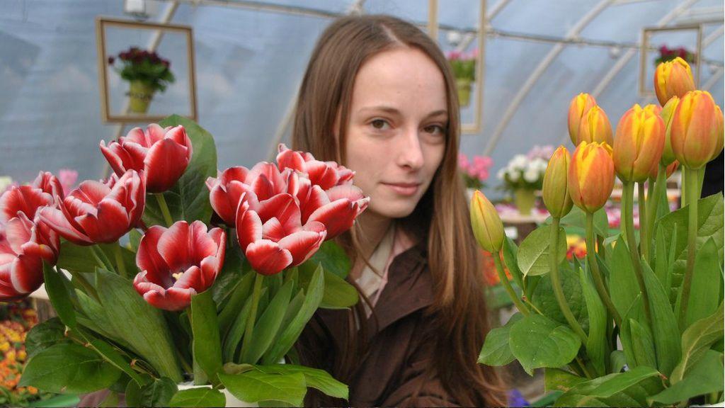 ÍGy érdemes gondozni a tulipánt