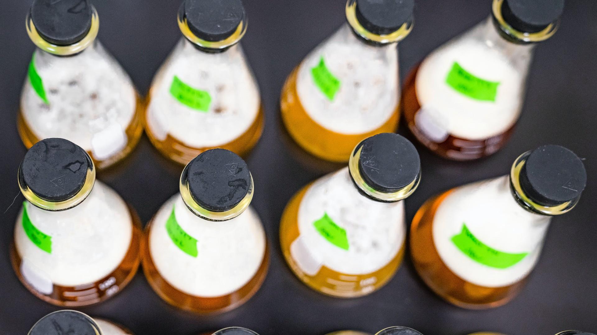 sör idősek otthona koronavírus