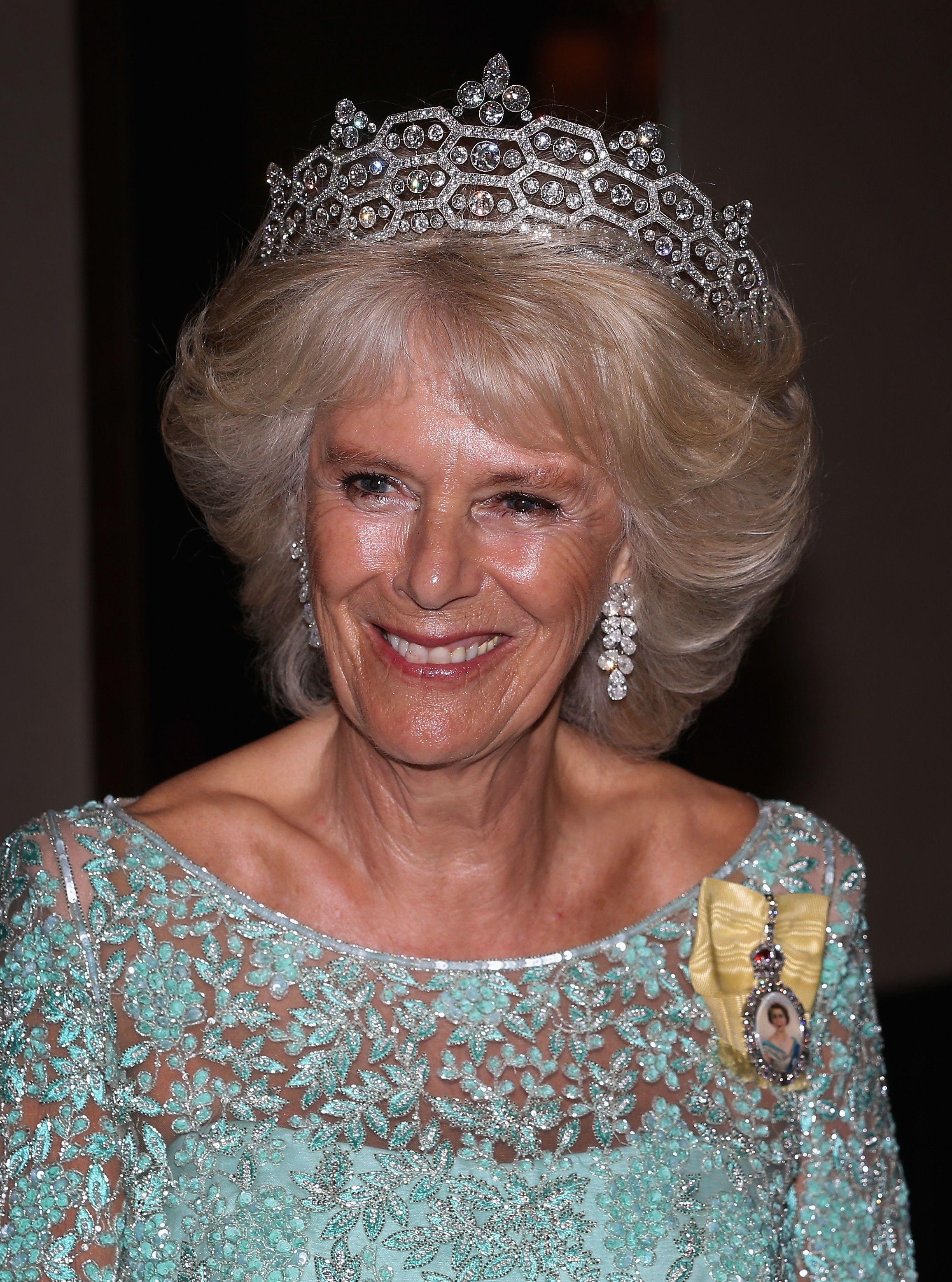 Kamilla cornwalli hercegné 2013-ban, ruháján a királyi családi rangjelzés.