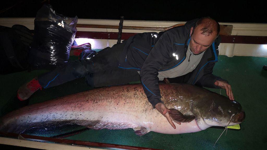 Horgász és a rekordfogás (Fotó: sporthorgasz.eu)