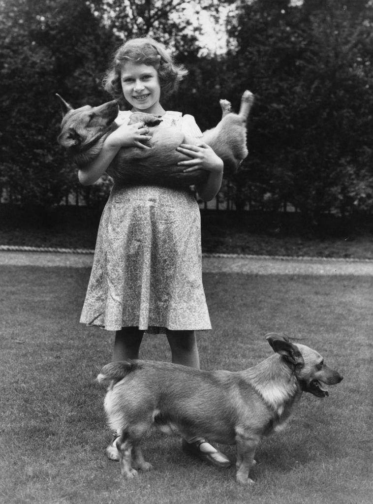 II. Erzsébet királynő két corgijával