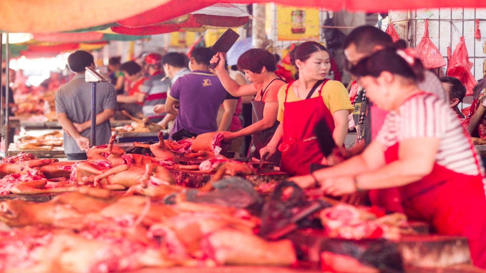 Kínai kutyahúsfesztivál (Getty Images)