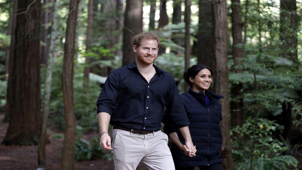 Egy Disney dokumentumfilmhez kölcsönözte hangját a civil életet kezdő egykori Sussex hercegnéje. Getty Images