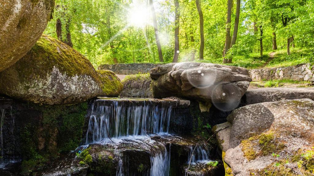 Zöldellő erdő és vízesés tavasszal