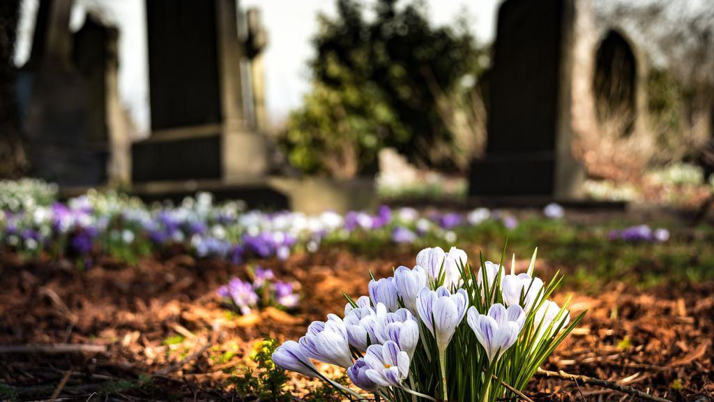 Eltűnt egy sírhely a Megyeri úti temetőből.