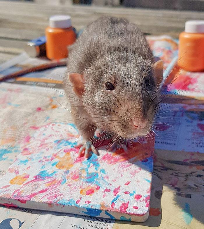 Így készül a festmény