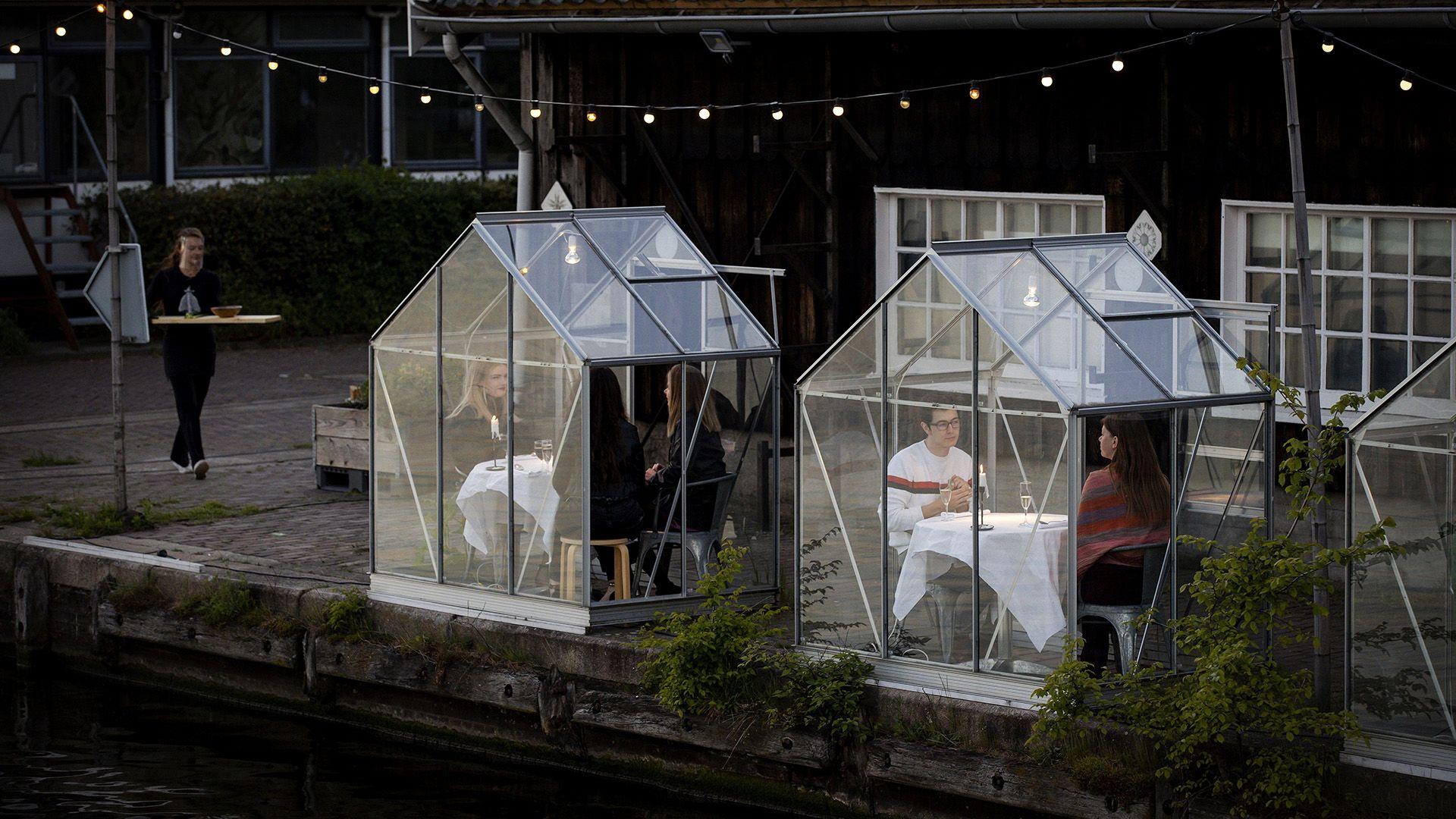 Üvegház-étteremmel oldják meg a randihiányt az amszterdami fiatalok