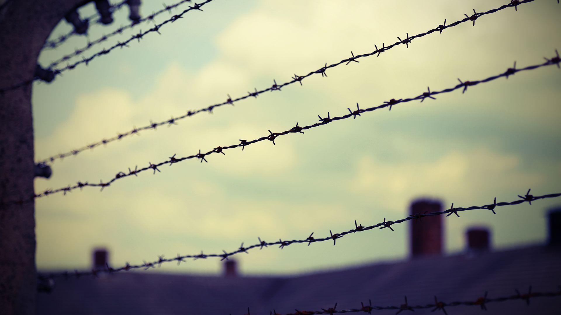 Szívbemarkoló fénykép került elő az auschwitzi koncentrációs táborból