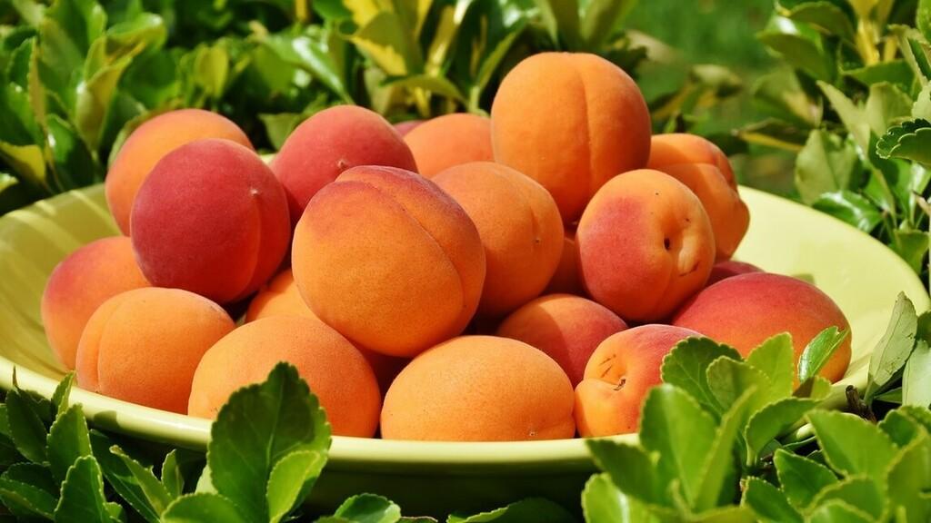 Drágábbak lehetnek idén a gyümölcsök