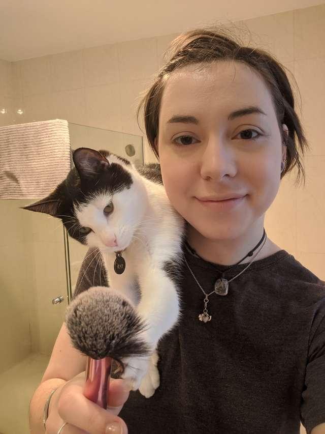Ez a macska nem barátja a sminkecsetnek.