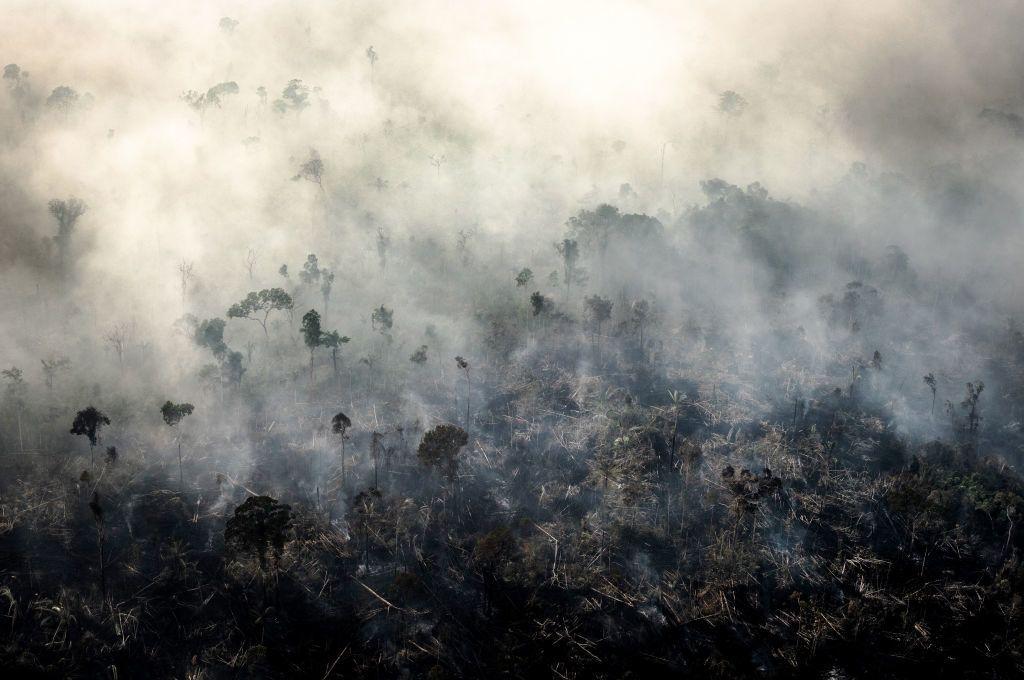 Kutató biológus: az ember is felelős a járványért