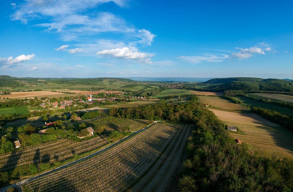 Gyönyörű panoráma nyílik a szőlőhegyről a Balatonra