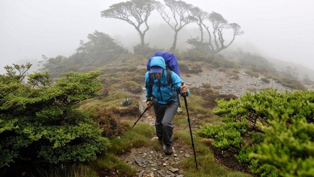 Tizennyolc nap után találtak meg élve két túrázót Új-Zélandon