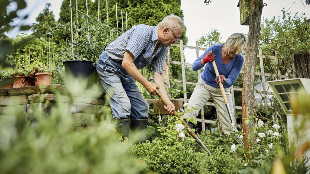 Megszállottan építi a tökéletes kertet a karanténban élő házaspár