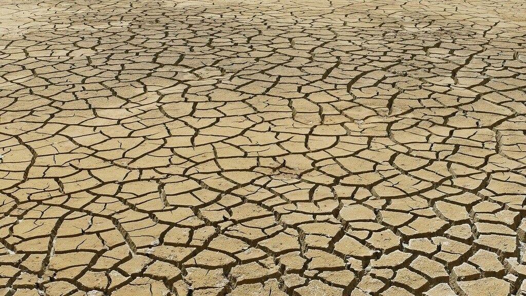 A tudósok szerint a jelenlegi intézkedésekkel nem menthető meg az ökoszisztéma