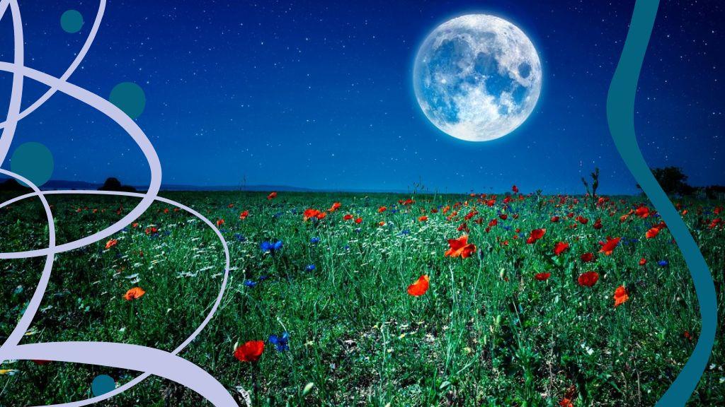 Különleges lehetőséget jelez a májusi virághold ezeknek a csillagjegyeknek