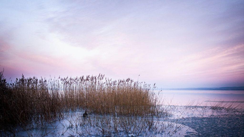 50 cm-rel is csökkenthetik a Balaton vízszintjét.