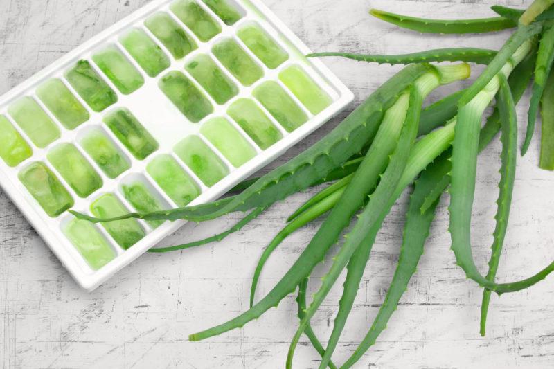 Aloe vera jégkockába zárva