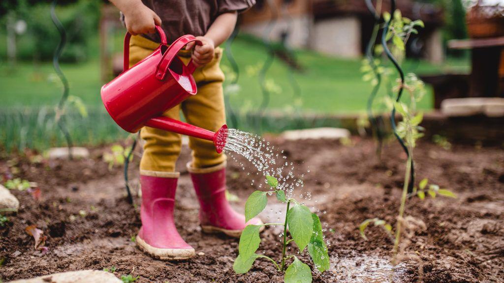 Tippek a takarékos kerti öntözéshez
