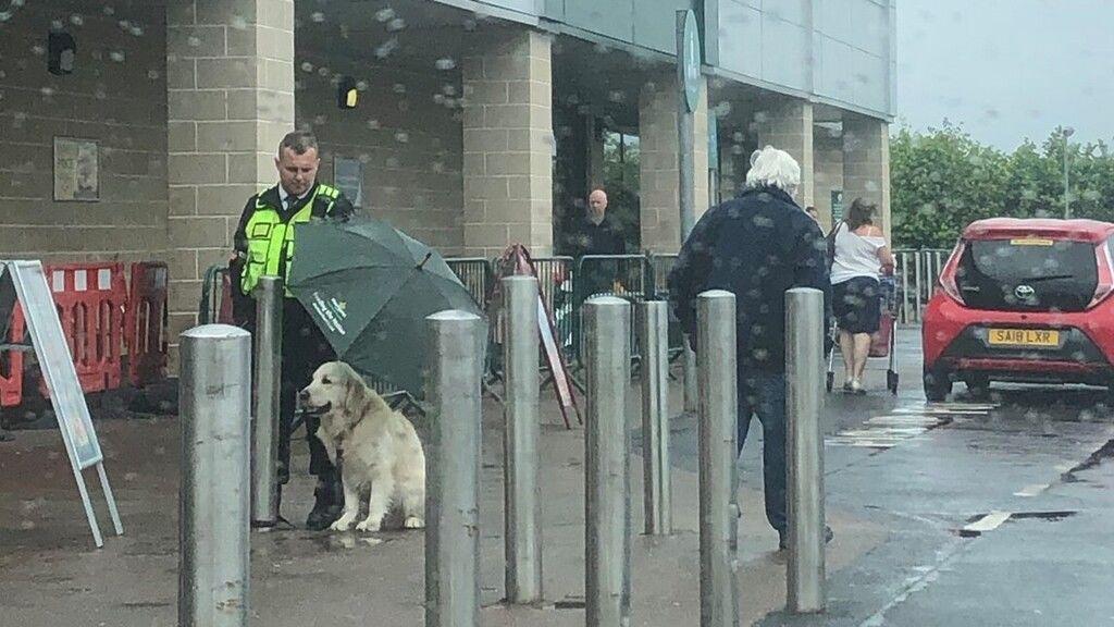 Ernyővel védte a kutyust a jólelkű biztonsági őr